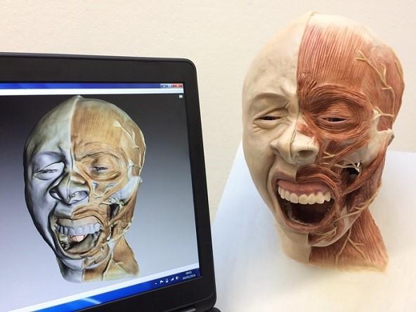 skanera 3D, Zastosowanie skanera 3D w multimediach