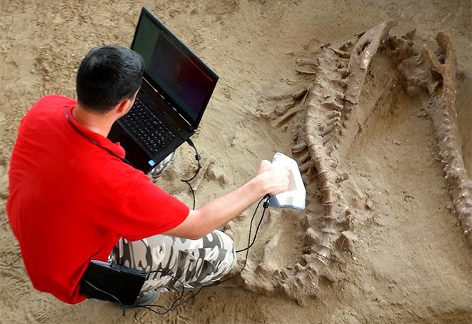 Zastosowanie skanerów 3D, Zastosowanie skanerów 3D w muzealnictwie i archeologii