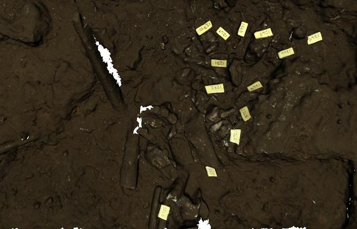 mobilne skanery 3D, Skanery 3D Artec pomogły dokonać odkrycia Homo Naledi